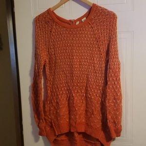 Moth Sweater